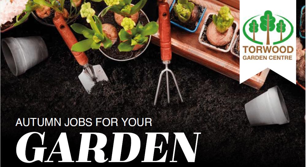 Autumn jobs for your garden